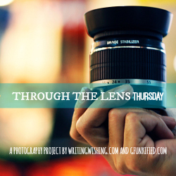 Through The Lens Thursday